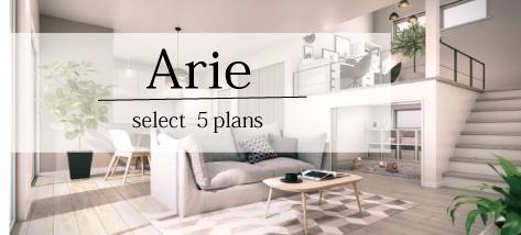 arie-banner.jpg